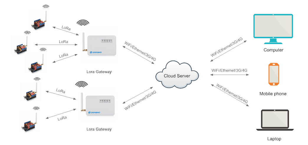 LG01 Network Structure